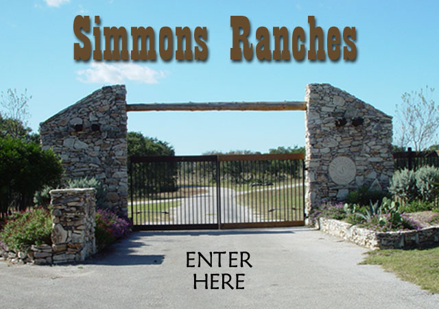 Quarter Horse Racing For Sale Texas Race Bred Quarter Horses For